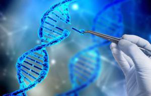 CRISPR натравили на РНК-вирусы в клетках человека